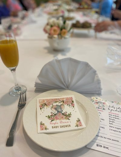 Baby Shower Planning Services